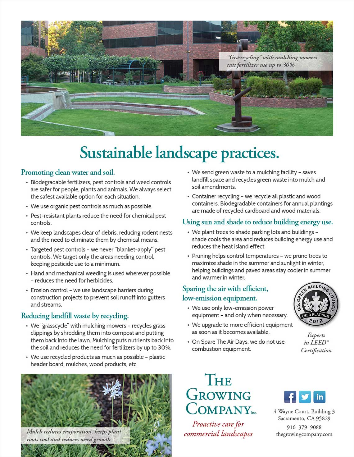 Growing Company Sustainable Landscape Practices Flyer